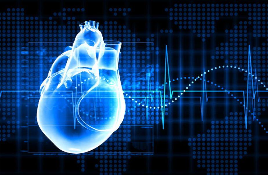 Equipo médico internacional busca desarrollar el primer corazón robóticohíbrido